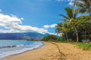 Hawaii Honeymoon Packages – Top 9 Hotels and Travel Guidehoneymoon destination