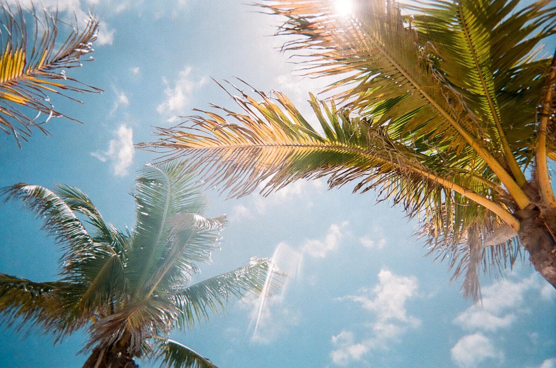 Florida honeymoon destination