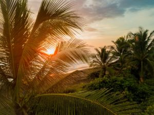 Costa Rica Honeymoon – Top 10 Hotels and Guide for 2021honeymoon destination