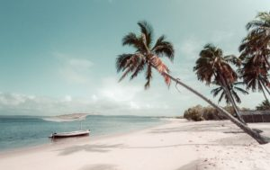 Mozambique Honeymoon – Everything You Need to Knowhoneymoon destination