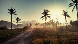 Indonesia Honeymoon – Everything You Need To Knowhoneymoon destination