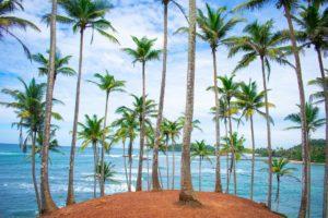Sri Lanka Honeymoon – Everything You Need To Knowhoneymoon destination