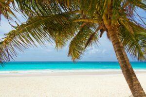 Caribbean Honeymoon – Top 10 Resorts and Guide for 2021honeymoon destination